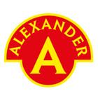 Alexander Literki Magnetyczne z Tablicą (3)